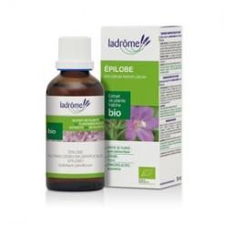 epilobe extrait de plante fraiche 50 ml